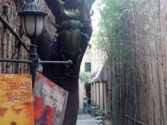 Entrance to Dragon Hill Spa