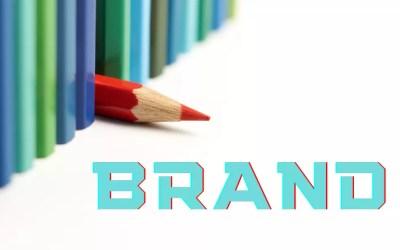 Brand Identity Case Study