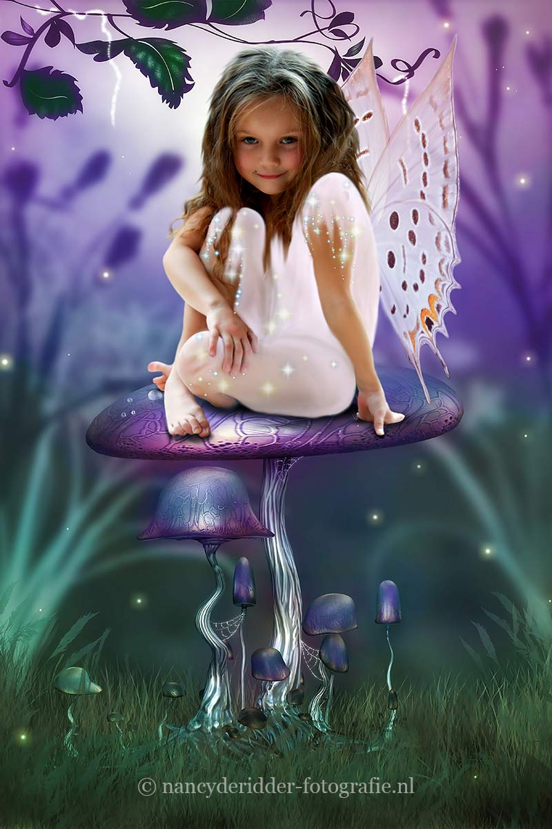 Fairy Girl on Mushroom