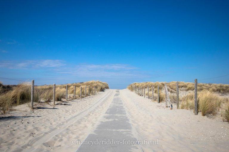 Hoevan Holland strand