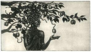 'Medusa in the Plum Tree'