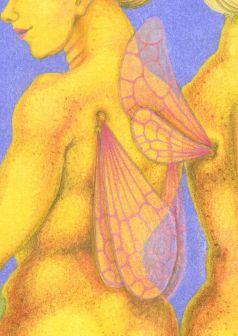 Detail of fairy wings