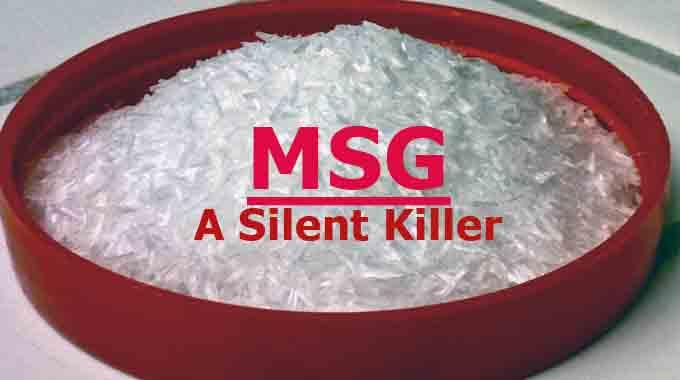 Hidden Sources Of Msg Nancy Guberti M S C N