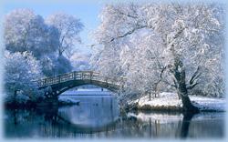 winter bridge image