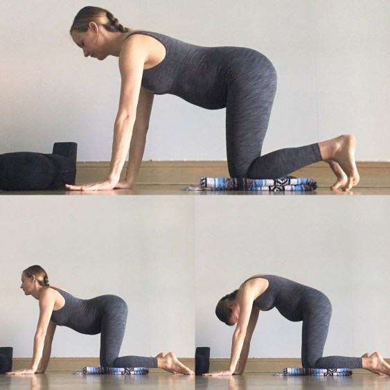 Cat / Cow - Prenatal Yin Yoga Sequence
