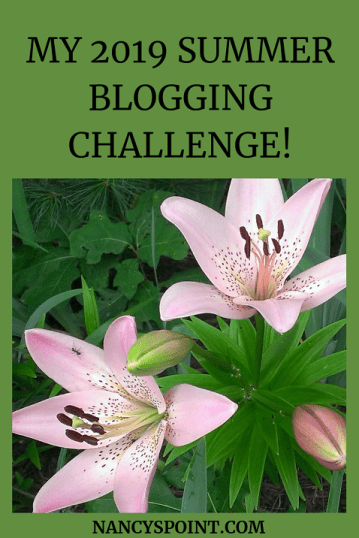 My 2019 #Summer #Blogging Challenge Is Here & It's a Blog Hop too!