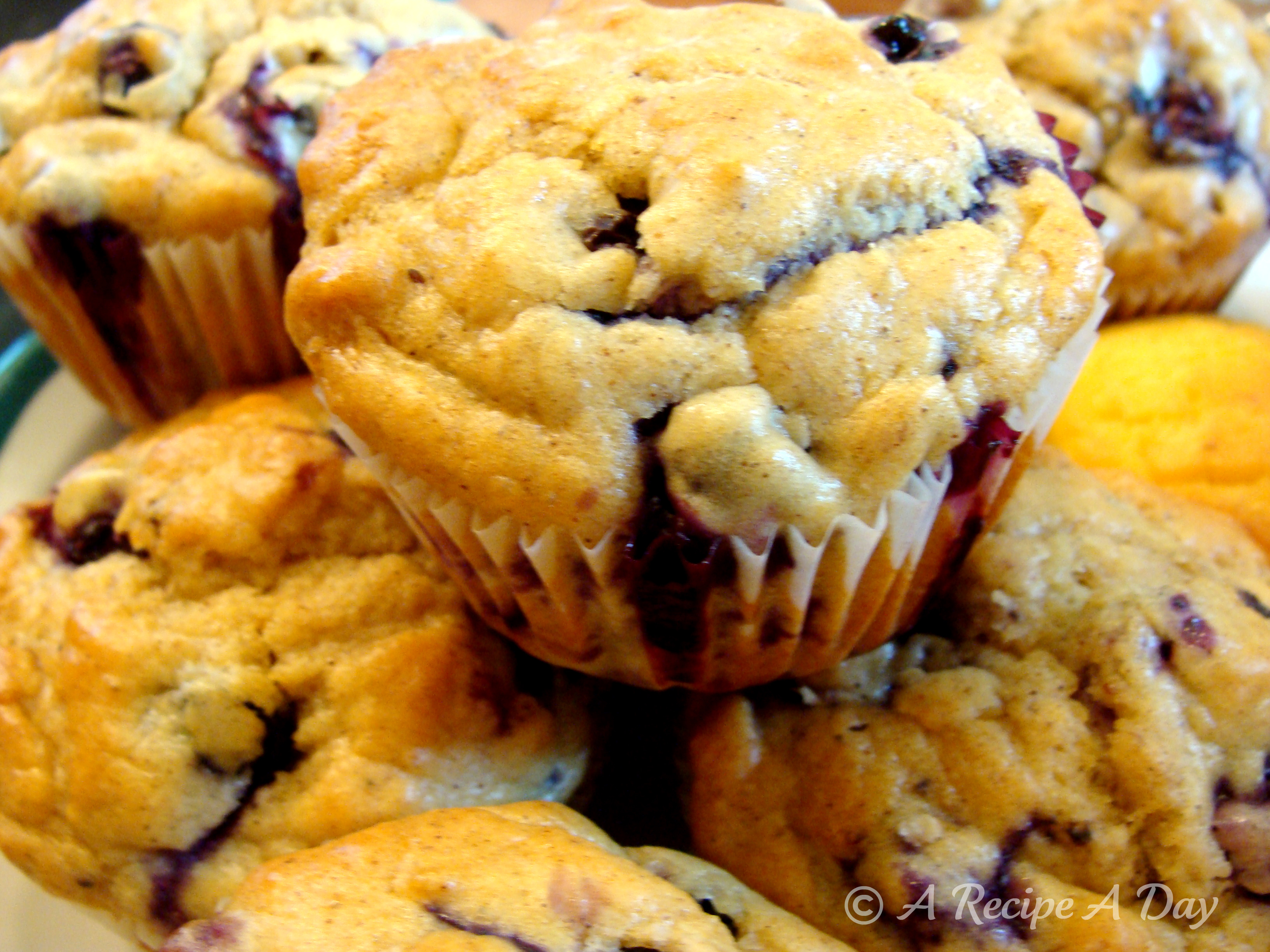 SF Blueberry Muffins