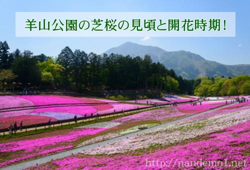 hitujiyama01
