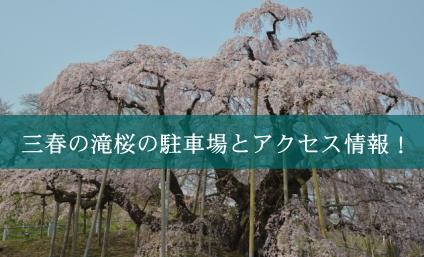 takizakura01