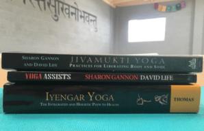 Yoga Liturature: Jivamukti Yoga by Sharron Gannon & David Life ($20), Yoga Assists by Sharron Gannon & David Life ($36), and Iyengar Yoga by B.K.S Iyengar ($30). Words from David Life, Sharron Gannon, and B.K.S Iyengar are sure to inspire moms' Jivamukti yoga practice to the next level.