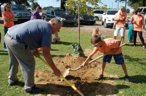 David Rasberry, maternal great-grandfather of Jagger Zinzer, and Hawkins Zinzer, Jagger's brother, finish planting of the red oak tree.