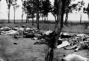 """Henry Morgenthau, Sr., then U. S. Ambassador to the Ottoman Empire, wrote on the back of this photograph: """"Scenes like this were common all over the Armenian provinces, in the spring and summer months of 1915. Death in its several forms -- massacre, starvation, exhaustion -- destroyed the largest part of the refugees. The Turkish policy was that of extermination under the guise of deportation."""""""