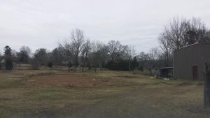 Future Victory Garden land, seen facing basically north from Hwy. 178