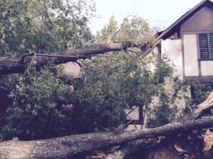 Storm repairs