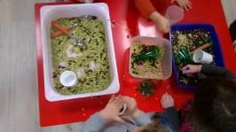 Manipulation de graines - Bacs sensoriels