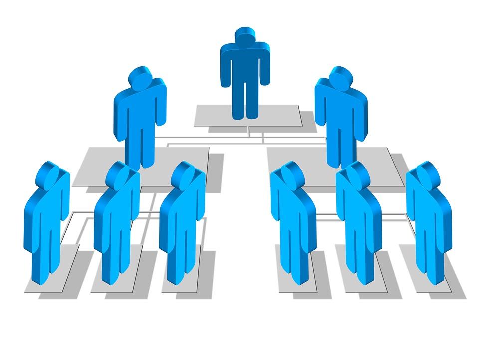 imagem organograma empresa