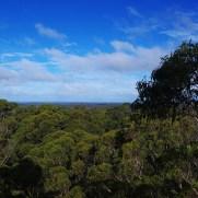 Around Nannup Bush Retreat