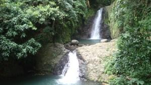 Grenada tom 160731