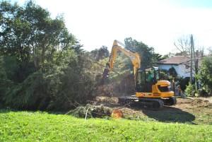 Abattage mécanique en Pyrénées Atlantique 64 et Landes 40 67 - ECHEGARAY Ñaño élagage