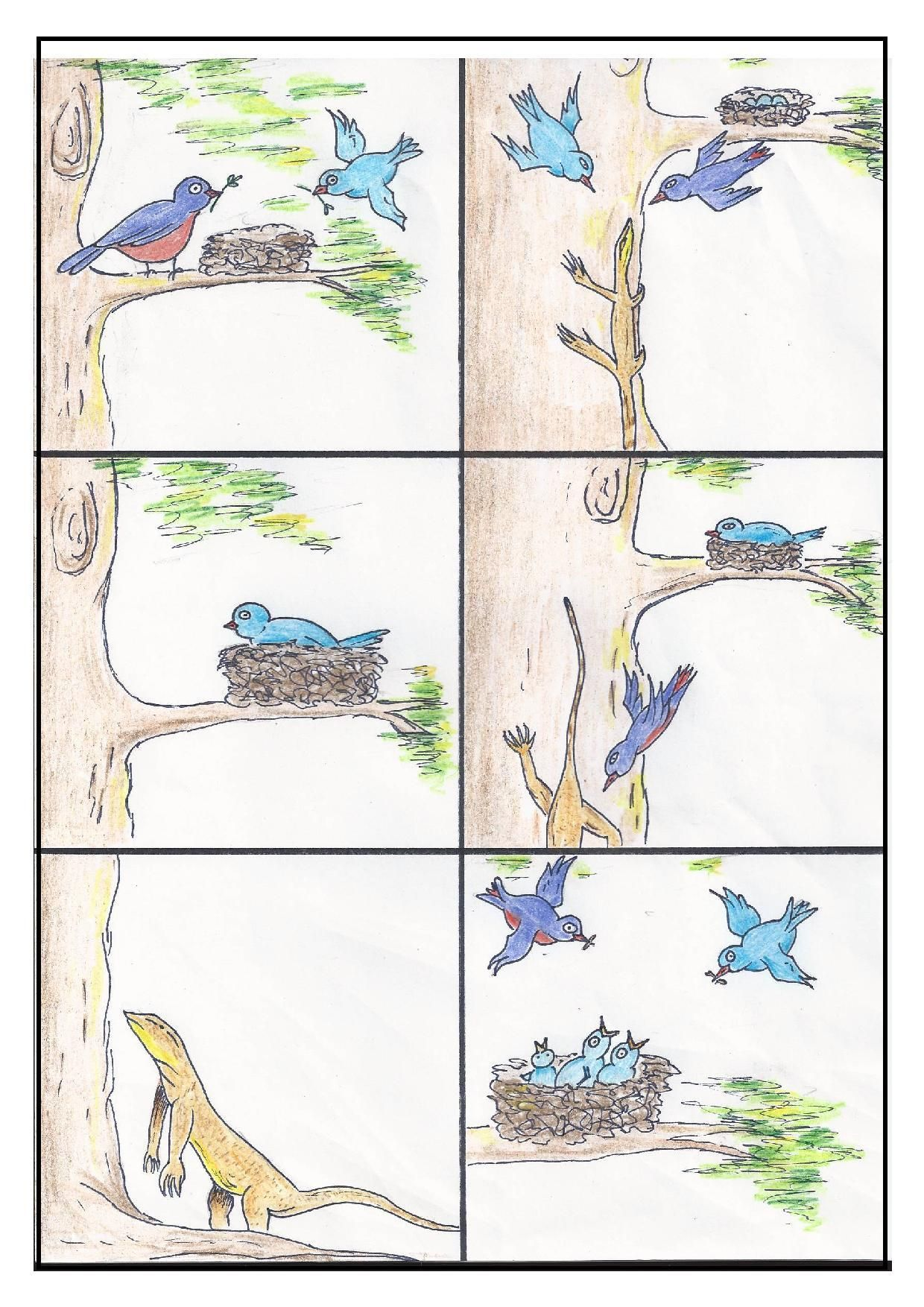 The Redheaded Woodpecker Third Grade Reading Worksheets