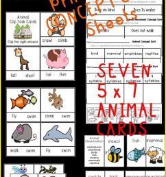 Lkg Worksheets: Flipclass Genius Kids Workbooks These Colourful And on Best  Worksheets Collection 6365 [ 1472 x 736 Pixel ]