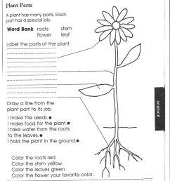 Seek And Finds   Preschool Education Fun   Fun Worksheets [ 1113 x 810 Pixel ]