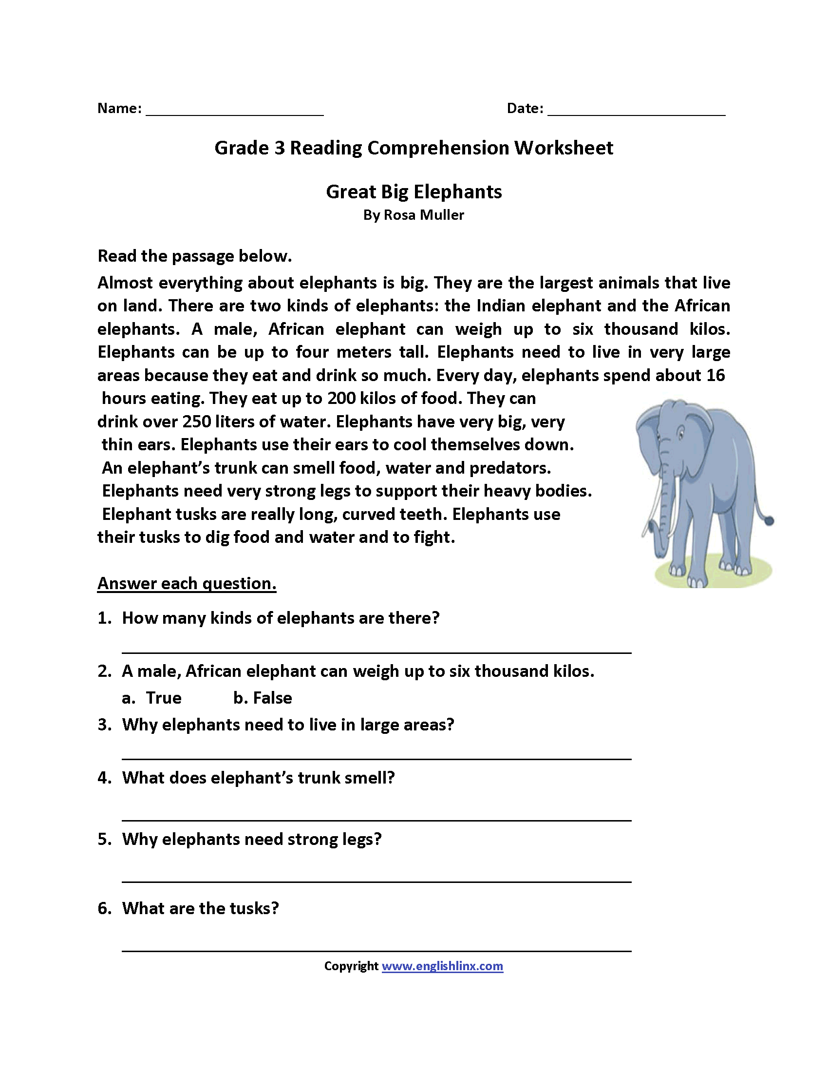 hight resolution of Great Big Elephants Third Grade Reading Worksheets   Reading   Third on  Best Worksheets Collection 2218