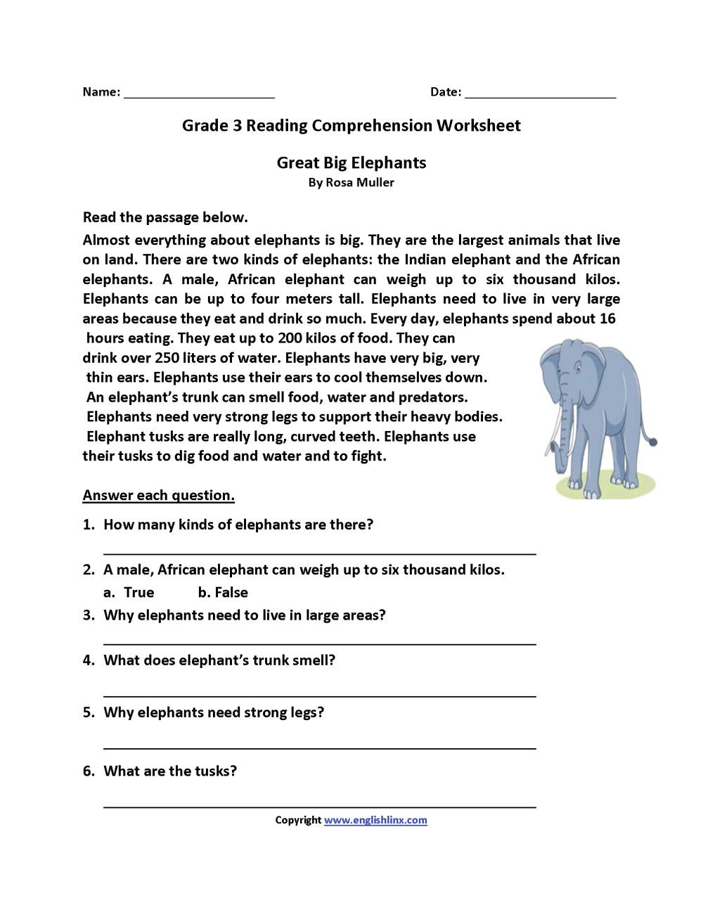 medium resolution of Great Big Elephants Third Grade Reading Worksheets   Reading on Best  Worksheets Collection 2268