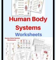 Human Body Worksheets And Notebook Pages Including Systems Matching on Best  Worksheets Collection 2973 [ 1102 x 735 Pixel ]
