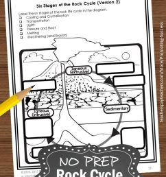 22 Best 4th Grade Science Worksheets To Print images on Best Worksheets  Collection [ 1102 x 735 Pixel ]