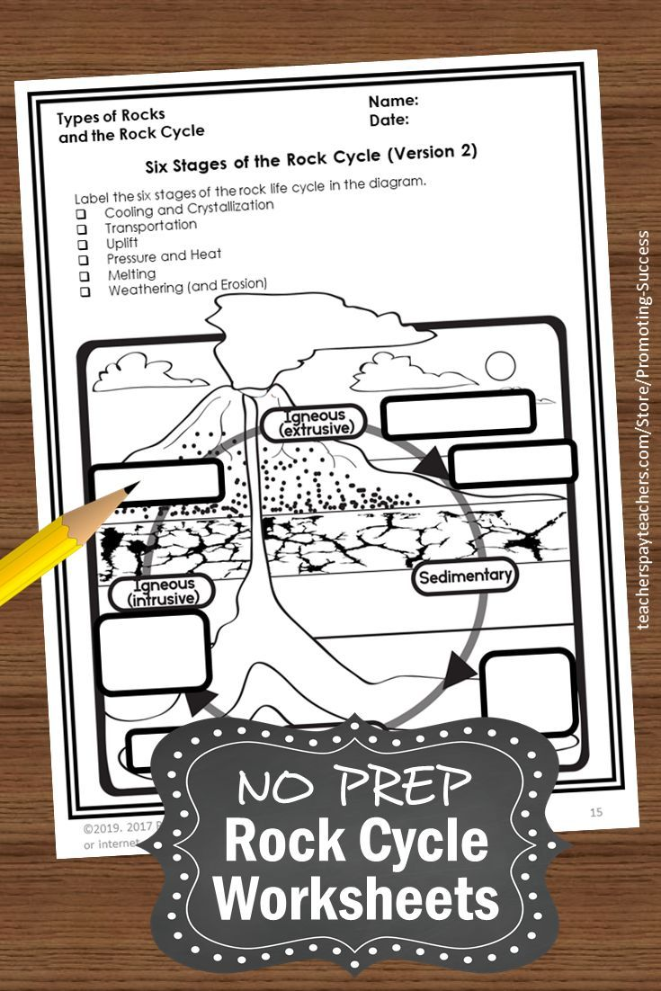 medium resolution of 22 Best 4th Grade Science Worksheets To Print images on Best Worksheets  Collection