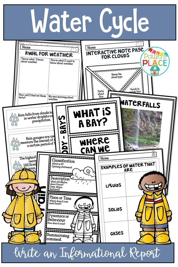 medium resolution of Rain And Water Cycle Activities And Worksheets   Tpt Science on Best  Worksheets Collection 163