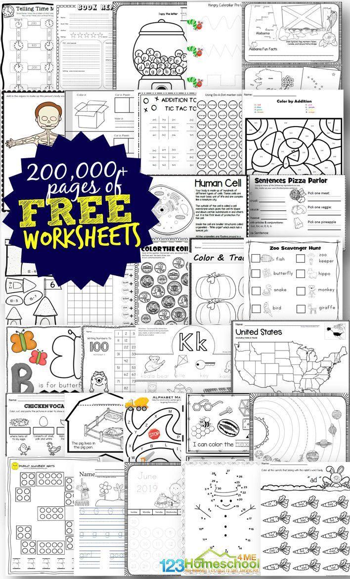 medium resolution of Free Worksheets - 200