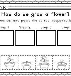 Worksheets For Sequencing In Spring   Obc General Teaching on Best  Worksheets Collection 314 [ 2550 x 3300 Pixel ]