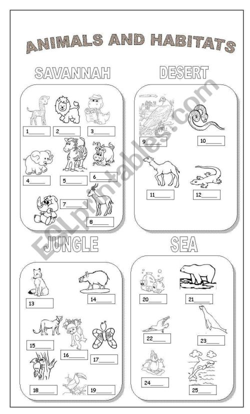 small resolution of 9 Best Animal Habitats Worksheets images on Best Worksheets Collection