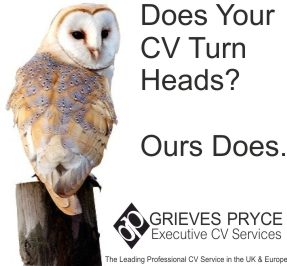 Director CV Writing by rofessional CV Experts