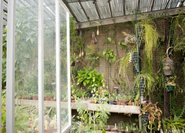 Awesome Jardin Des Plantes Nantes Palmarium Ideas - House Interior ...