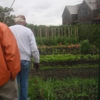 #541: Russell Morash's Garden