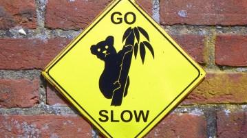 go slow nantygreens.com