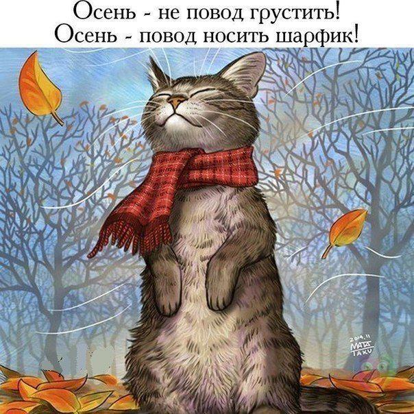 Осень - не повод грустить)