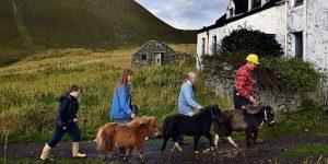 Остров миниатюрных лошадок в Шотландии