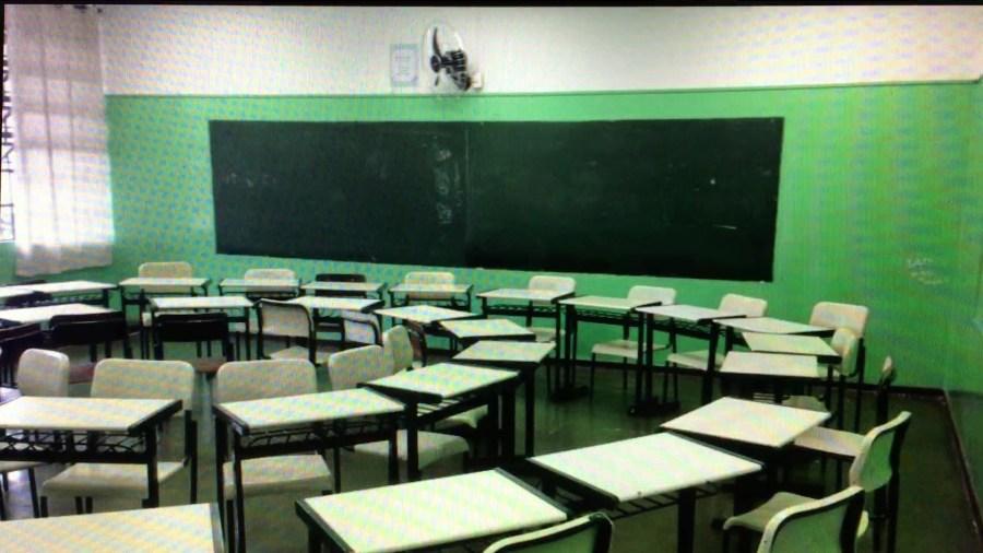 escola-grazi07