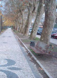 outono_Rio Lis_Leiria-Portugal