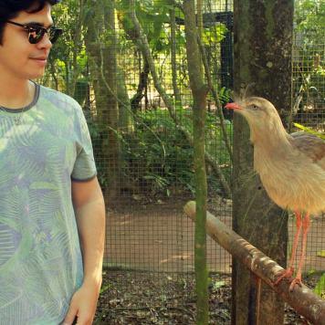 foz_do_iguacu_parque_das_aves_seriema