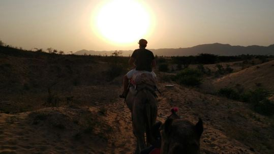 por do sol no deserto de Pushkar