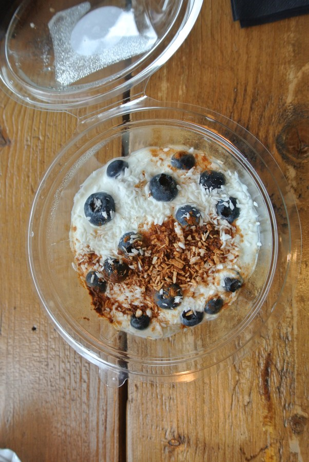 Greek yogurt with coconut and blueberry bowl.