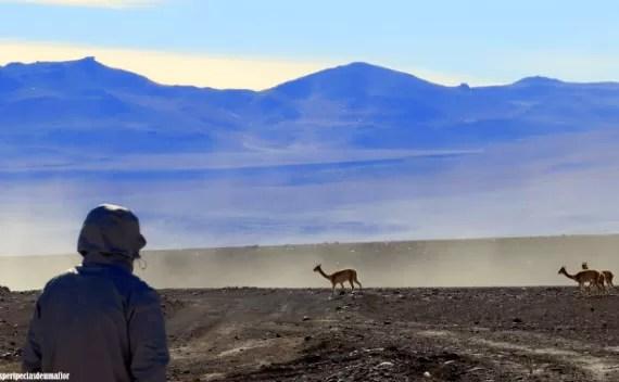Atacama – dicas práticas e úteis para ler antes de ir