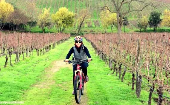 Lapostolle Residence – tour de bicicleta pelos vinhedos