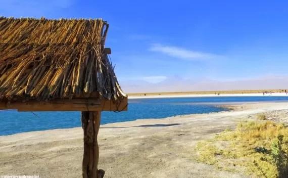 Laguna Cejar, Ojos del Salar e por do sol na Laguna Tebinquiche (Atacama) em uma tarde