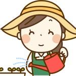 ファミリーマート「育てるサラダ」を楽しもう!5分で出来る超簡単メニュー大公開!